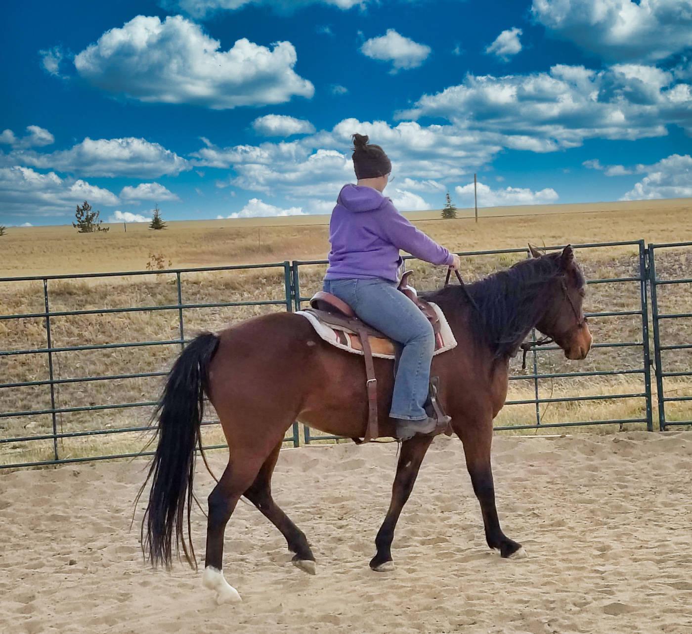 Sage Saddled
